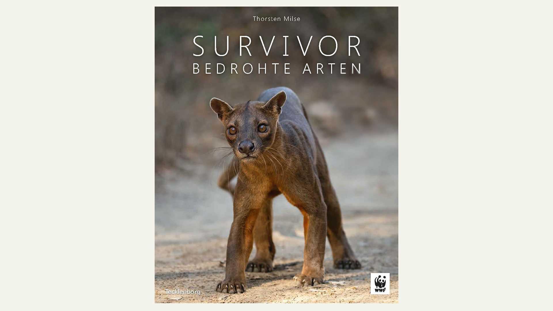 Buch Thorsten Milse Survivor